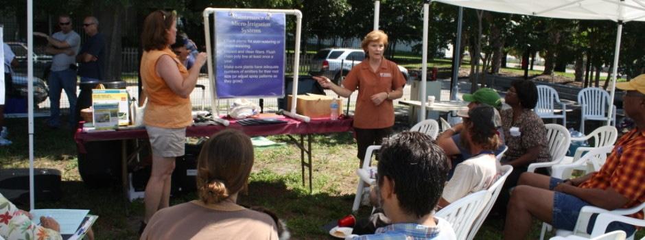 Tampa Heights Community Garden 4