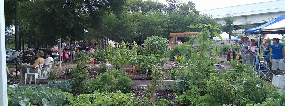Tampa Heights Community Garden 5